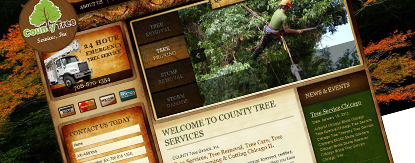 Certifiedtreeservices